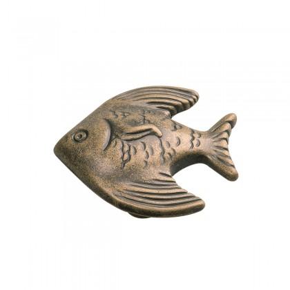 "South Seas Angel Fish Knob (Antique Mist) - 1 1/2"""