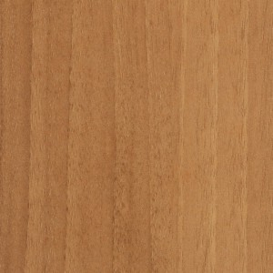 Cinnamon Noce (Pionite Laminate)